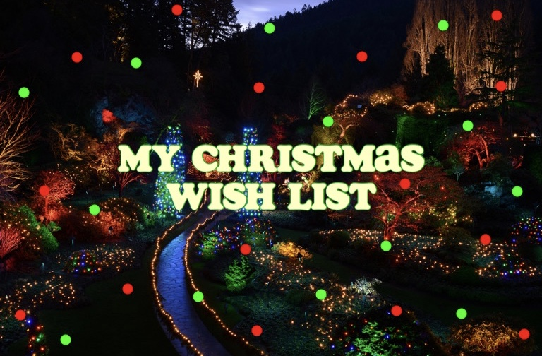 My 2017 Christmas Wishlist