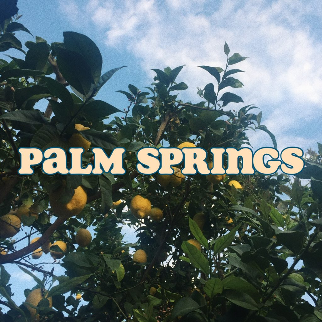 My Palm Springs Adventure During Reading Week